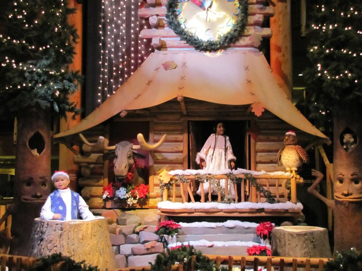 what - Great Wolf Lodge Christmas