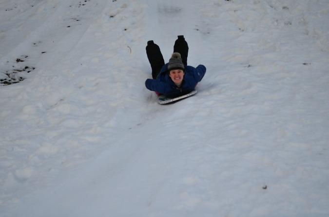 Snow Daze Polar Pals Sled Review