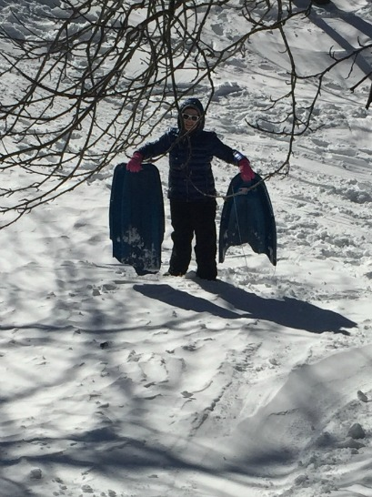 broken sled