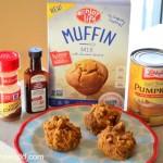 Allergen Free Pumpkin Muffins Recipe